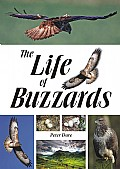 The Life of Buzzards Cover