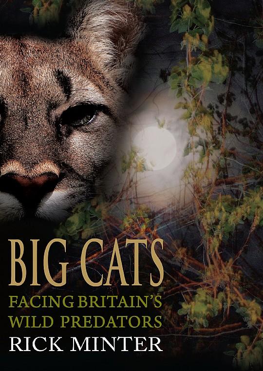 Big Cats Facing Britain S Wild Predators Ebook